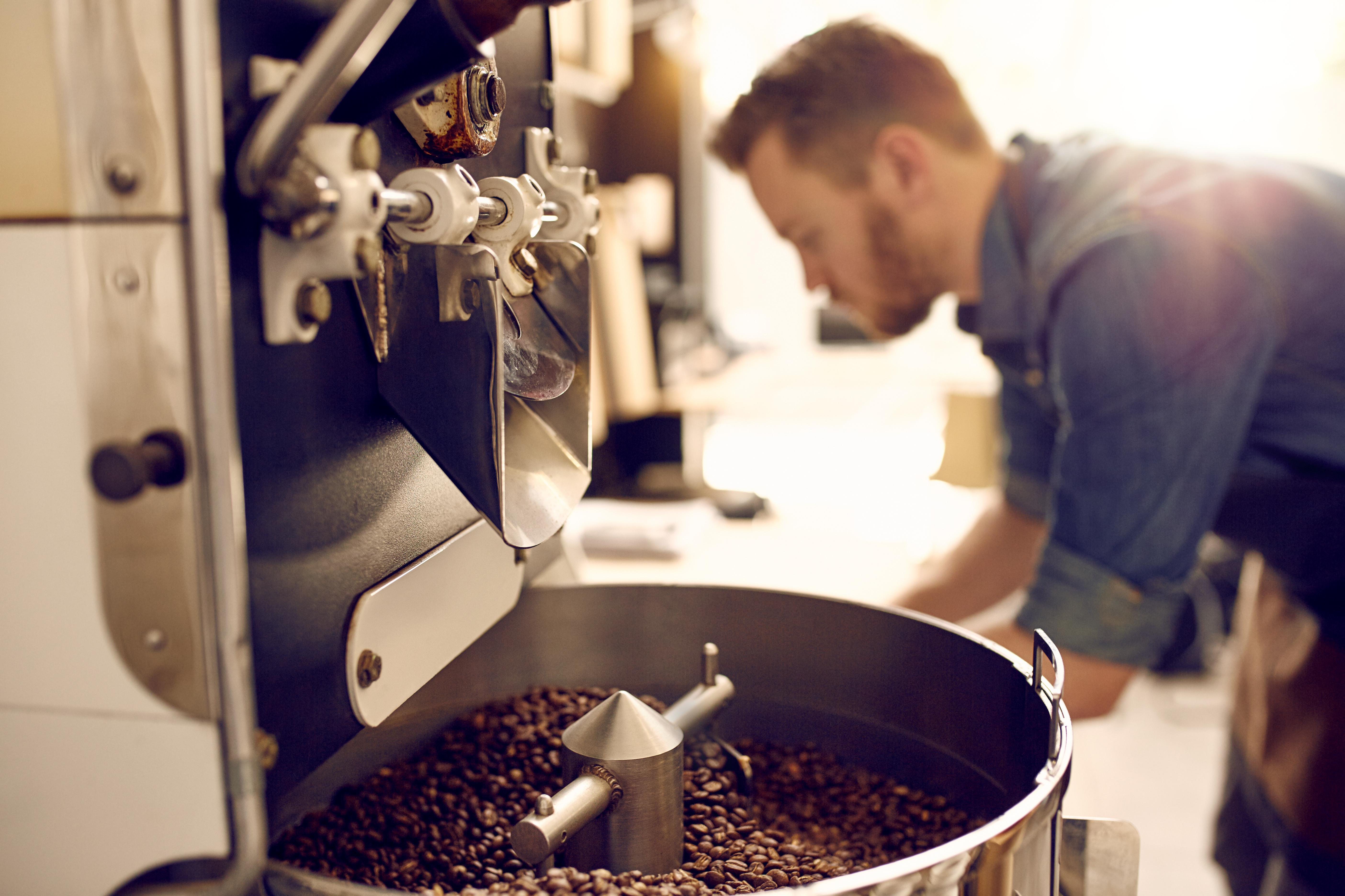 risultati massimi del chicco di caffè verde